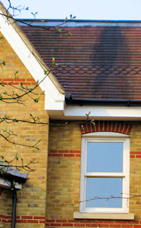 Ray Jones Roofing - Roof repair